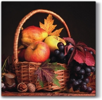 Lunch napkins Autumn Basket