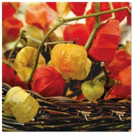 Lunch napkins Physalis of Autumn