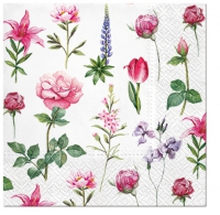 Serviettes de table 33x33 cm - Boons de Jardin