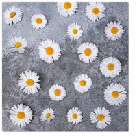 Napkins 33x33 cm - Daisies Love