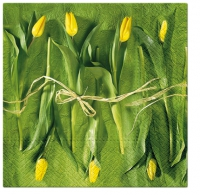 Lunch napkins Fresh Tulips