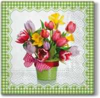 Lunch napkins Spring Breath (green)