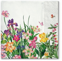 Lunch napkins Power of Spring