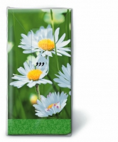 fazzoletti TT Daisies on green