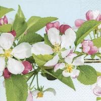 Napkins 25x25 cm - Apple Blossom