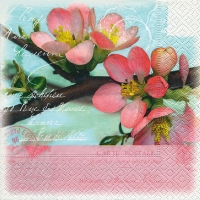 Lunch Servietten Blossom greetings