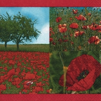 Lunch napkins Red poppies