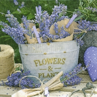 Lunch napkins Lavender decoration