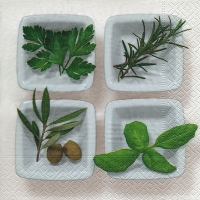 Lunch napkins Culinary herbs