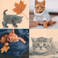 Serviettes lunch Autumn cats
