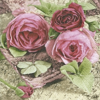 Lunch napkins Sentimental roses