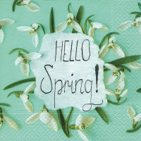Lunch napkins Hello spring