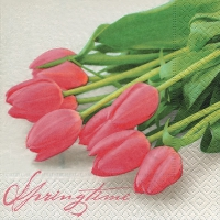 Lunch napkins Pink tulips