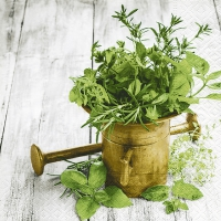 Lunch Servietten Variety of herbs