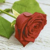 Napkins 33x33 cm - Lovely rose