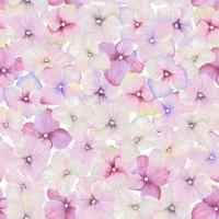 Servietten 33x33 cm - Kleine Blüten