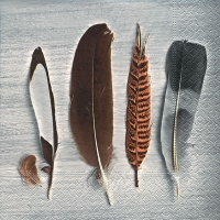 Lunch Servietten Collection of feathers