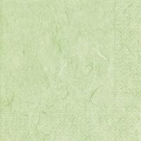 Serviettes de table 33x33 cm - Vert menthe pure