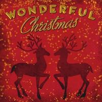 Napkins 25x25 cm - Wonderful Christmas