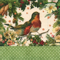 Cocktail napkins Robins in green