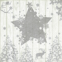Lunch napkins Winter print silver