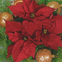 Lunch napkins Red poinsettia