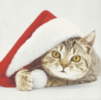 Serviettes lunch Santa cat