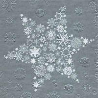 Lunch napkins Moments My Xmas star silver