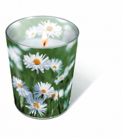 Candles in a glas Full of daisies