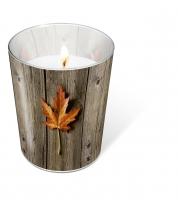 Candles in a glas Lonley leaf
