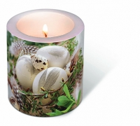 Bougies Candle Bird nest
