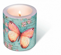 Bougies Candle Butterfly poetry