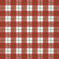Lunch Servietten xmas gingham red