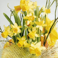 Lunch napkins daffodil blossoms
