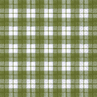 Lunch Servietten cute gingham green