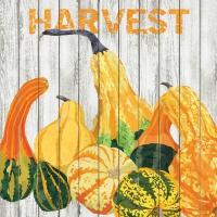 Cocktail Servietten Harvest