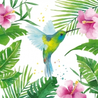 Serviettes cocktail  Tropical Colibri