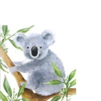 Serviettes cocktail  Tropical Koala Bear