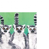 Cocktail napkins Lemur Amigos