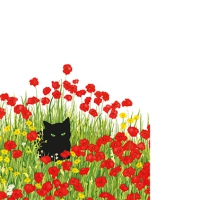 Cocktail napkins Black Cat Poppies