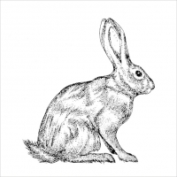 Lunch napkins Mod Rabbit black white