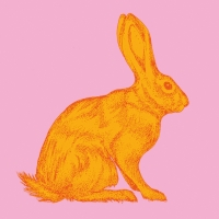 Servilletas Lunch Mod Rabbit orange pink