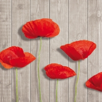 Serviettes lunch Hot Red Poppies