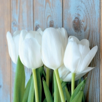 Lunch Servietten White Tulips on Wood