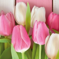 Lunch Servietten White & Pink Tulips