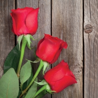 Lunch Servietten Red Roses on Wood