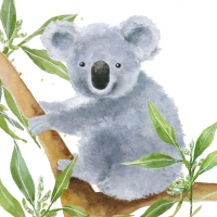 Serviettes lunch Tropical Koala Bear