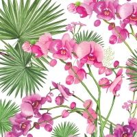 Lunch napkins Orchids & Palms