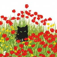 Serviettes lunch Black Cat Poppies