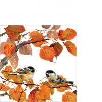 Cocktail napkins Autumn Birds